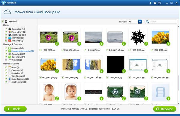 Seleccione los archivos multimedia para recuperar