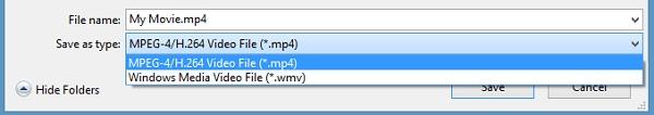 Selecione o formato desejado para converter de WLMP