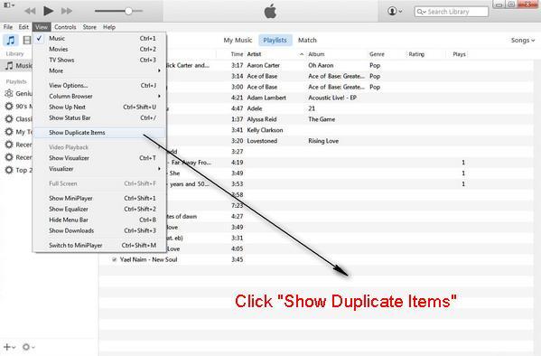 Clique em Mostrar Itens Duplicados