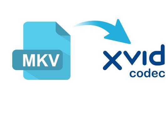 MKV para XviD