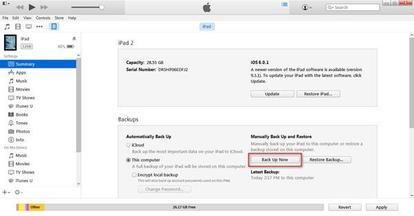 Efetue um backup do seu iPad